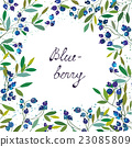 Blueberry background for the label or card 23085809