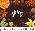 香料 香草 大茴香 23088368