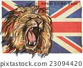 Lion - An hand drawn vector 23094420