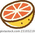 grapefruit, grapefruits, fruit 23103219