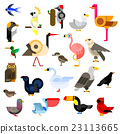 Wild, aquatic, tropical and urban birds flat icons 23113665