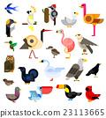 Wild, aquatic, tropical and urban birds flat icons 23113665