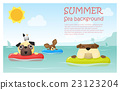 Enjoy tropical summer holiday with little dog 2 23123204