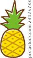 파인애플, 과일, 후르츠 23125733