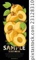 apricot fruit fresh 23128310