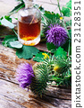 Flower and burdock extract 23128351