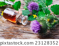 Flower and burdock extract 23128352
