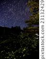 firefly, bug, lightning 23132429