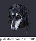 Saluki polygonal portrait 23162905