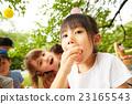 孩子們享受野餐 23165543