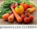 绿色黄色蔬菜 23168844