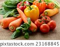 黃綠色蔬果 蔬菜 生的蔬菜 23168845