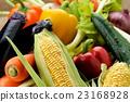 蔬菜 生吃蔬菜 夏季蔬菜 23168928