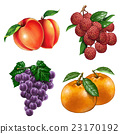 fruit, fruits, health 23170192