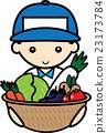 vegetables, vegetable, basket 23173784