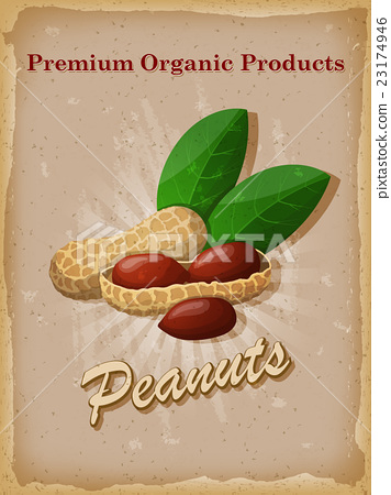 Peanuts vintage poster. Vector illustration. 23174946