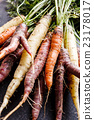 colorful carrots 23178017