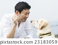 狗 訓練 研修 23183059