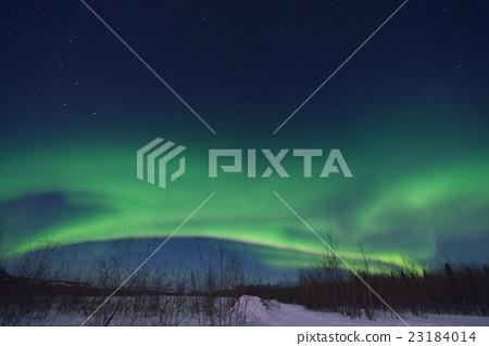 Aurora 23184014