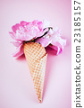 peony flowers 23185157