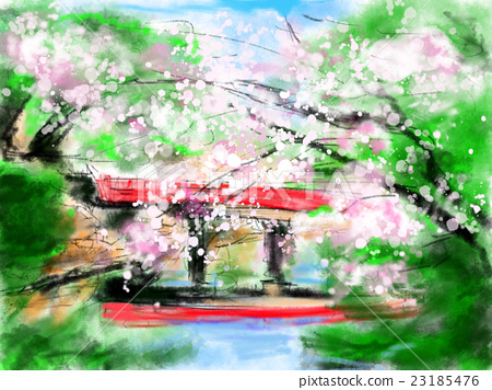 Cherry blossoms and red bridge illustration 23185476