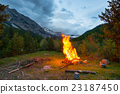 Burning camp fire into remote larch tree woodland 23187450