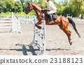 Equestrian jumping competition background 23188123
