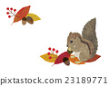 다람쥐와 낙엽 23189771