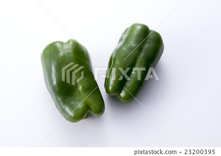 green pepper 23200395