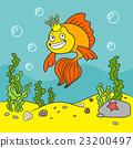 gold fish  23200497