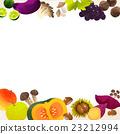 秋之美食 白底 矢量 23212994