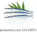 梭魚 針魚 竹刀魚 23218971