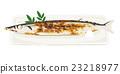 梭魚 針魚 加鹽燒烤或烤製 23218977