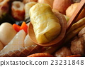 oden, cabbage roll, cooking in a pot 23231848