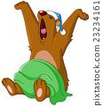 熊 打哈欠 动物 23234161