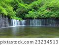 Shiraito Falls - Karuizawa Town Nagano Prefecture 23234513