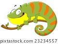 Chameleon 23234557