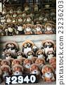 信樂燒 陶器 狸 23236203