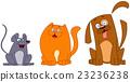 animal cat dog 23236238