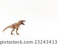 Tyrannosaurus: T-Rex 23243413