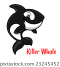 Cartoon black and white killer whale or orca 23245452