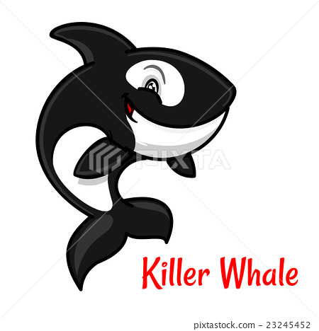 Cartoon black and white killer whale or orca - Stock ...
