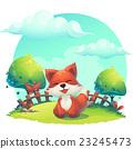 fox, animal, vector 23245473