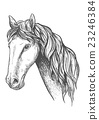 Racehorse of appaloosa breed sketch symbol 23246384