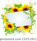 向日葵 花朵 花卉 23251931