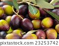 Fresh olives. 23253742