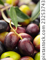 Fresh olives background. 23253743