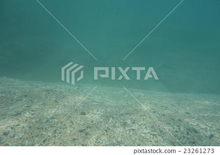 바다 갑자기 깊어지는 곳 23261273