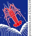 spiny lobster, vector, lucky charm 23262239