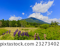 senjogahara, mount, nantai 23273402
